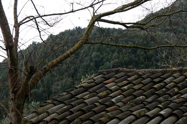 A rooftop in Contursi Terme