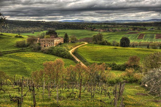 Countryside around Monteriggioni