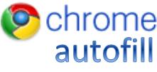 Chrome autofill Logo