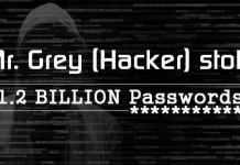FBI Wanted Mr. Grey a Single Hackers Stolen 1.2 Billion Login Password