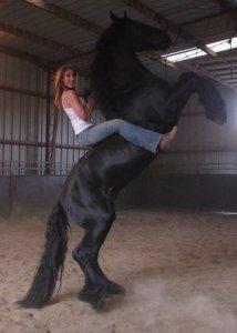 Tiffany on famous black stallion July 1020
