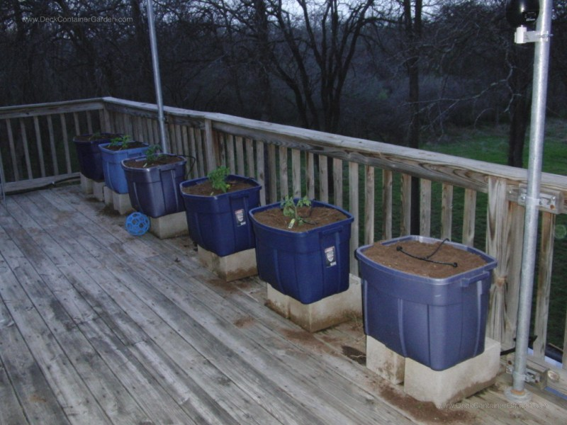 Large Of Vegetable Garden Planters