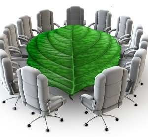 Corporate Social Responsibility: Is it an ''alternative to government''?