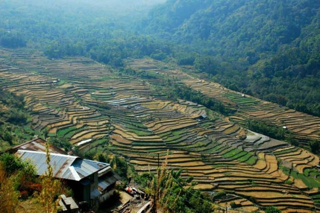 places_to_visit_in_india_nagaland