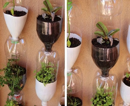 home decor, bottles, garden, plants