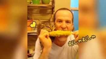 飼い主と一緒にトウモロコシを食べるネコ!-とっても仲良し♪