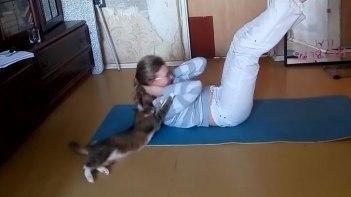 ネコさんがいる部屋で運動をしてはいけない・・・ネコさんを放っておくとこんなことになります