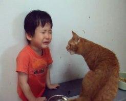 目の前で泣き止まない少年!ネコさんの取った行動がまるで魔法かのような効果を発揮する!