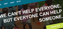 more best charity nonprofit wordpress themes feature
