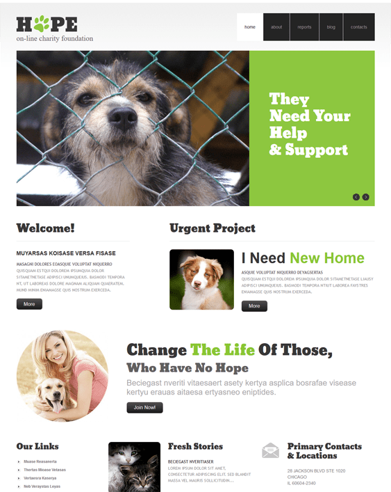 clear charity nonprofit wordpress themes