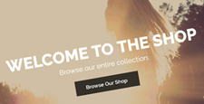 more best woocommerce themes feature