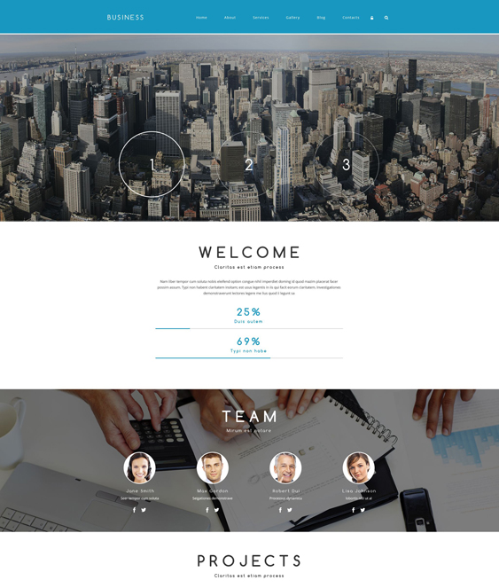 business drupal themes associate