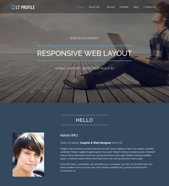 lt profile cv resume wordpress themes