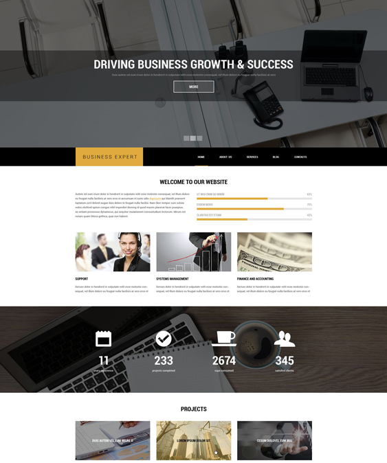 professional business drupal themes