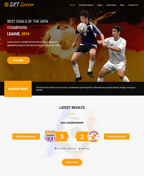 soccer sports wordpress themes