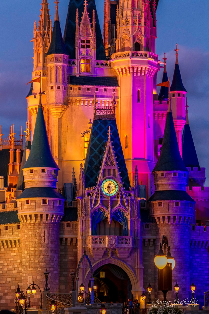 How Many People Go To Disney World Every Day - 2015 Edition