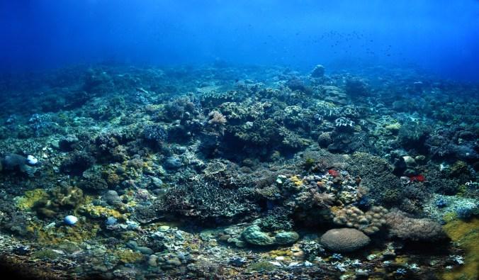 unterwater_2_v4_small
