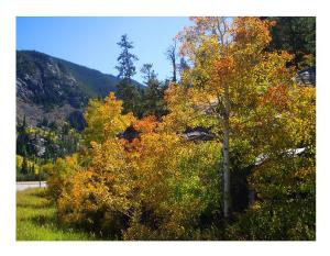 autumn, colorado, Dreaming of Mexico