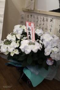 madoka_nakamoto 2-16-2064