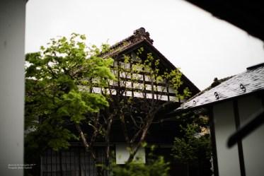 madoka_arikabe_teragishi-9338