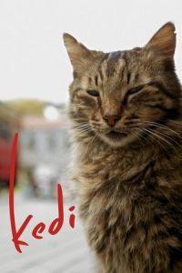 Nonton Film Kedi (2017) Subtitle Indonesia Streaming Movie Download