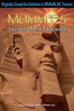 Nonton Film Mummies: Secrets of the Pharaohs (2007) Subtitle Indonesia Streaming Movie Download