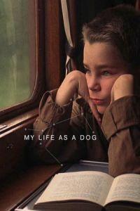 My Life as a Dog(Mitt liv som hund) (1985)