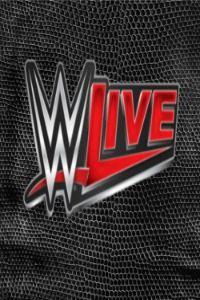 WWE 205 Live S01E21 18 4 (2017)