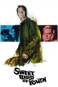 Sweet Bird of Youth (1962)