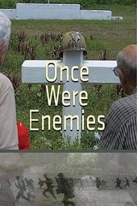 Once Were Enemies (2013)