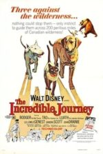 Nonton Film The Incredible Journey (1963) Subtitle Indonesia Streaming Movie Download