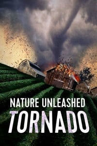 Nature Unleashed: Tornado (2005)