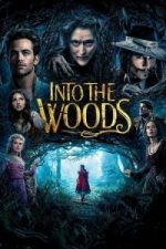 Nonton Film Into the Woods (2014) Subtitle Indonesia Streaming Movie Download