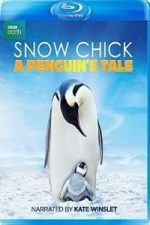 Nonton Film Snow Chick: A Penguin's Tale (2015) Subtitle Indonesia Streaming Movie Download