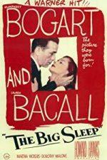 Nonton Film The Big Sleep (1946) Subtitle Indonesia Streaming Movie Download