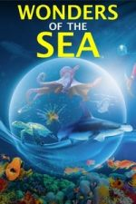 Nonton Film Wonders of the Sea (2017) Subtitle Indonesia Streaming Movie Download