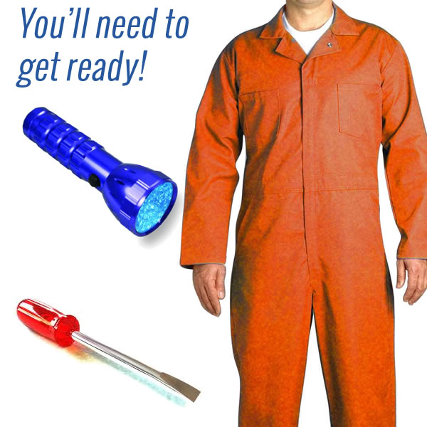 home termite inspection gear