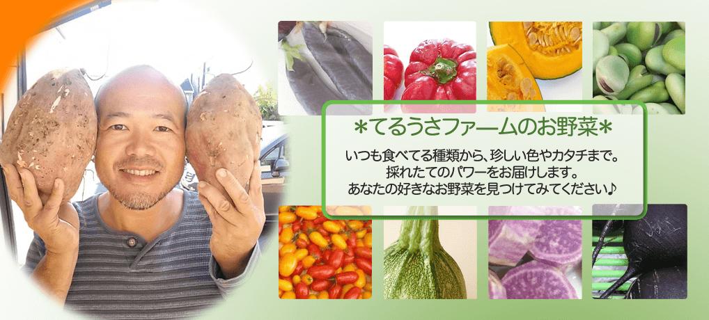 てるうさファームのお野菜