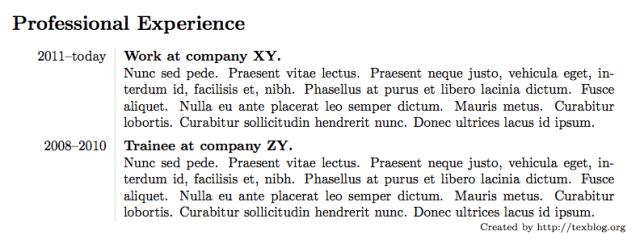 cv-profexp1