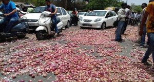 onion on indore road