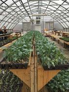 Refresh Appalachia Provides Agricultural Entrepreneurship Development