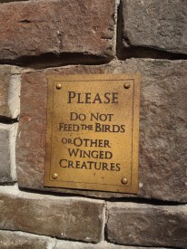 Sign on the back deck behind the Three Broomsticks.