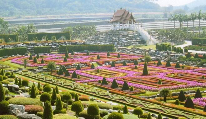 Паттайя Сад орхидей