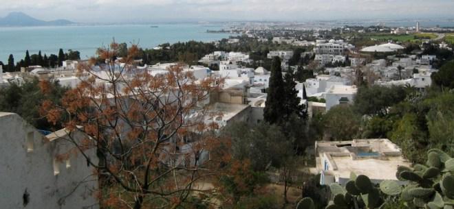 Цены на туры в Тунисе в феврале