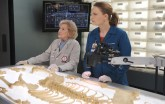"BONES: L-R: Guest star Betty White and Emily Deschanel in the ""The Carpals in the Coy-Wolves"" episode of BONES airing Thursday, Oct. 22 (8:00-9:00 PM ET/PT) on FOX. ©2015 Fox Broadcasting Co. Cr:"