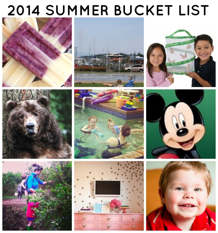 2014 SUMMER BUCKET LIST