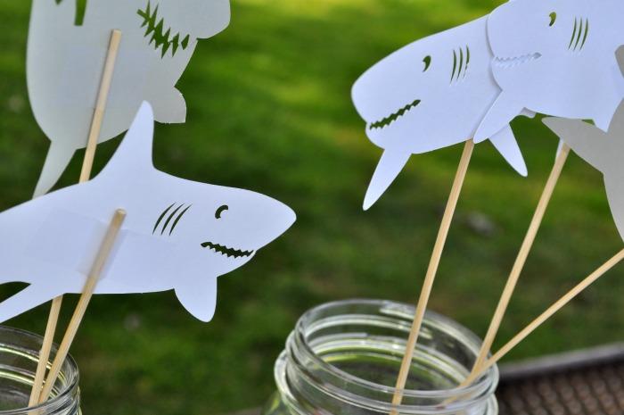 cameo shark 2
