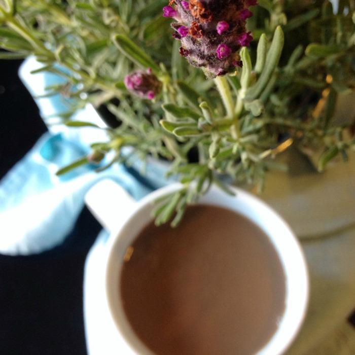 lavender mocha 3