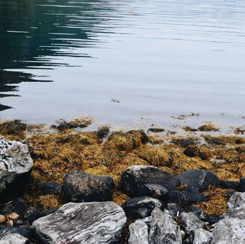 scandinavian_feeling_hygge_sea_autumn