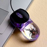 smithsonian_spider_mouse